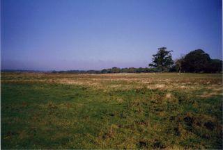 Marsh 1 Oct 1998